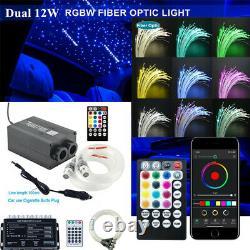 Car Starry Twinkle Fiber Optic Lamps BT APP Control Headliner Light RGB withRemote